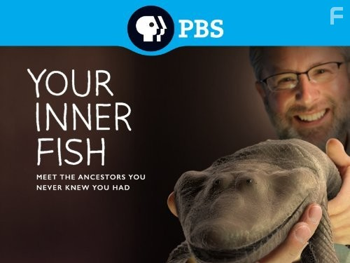 your inner fish d Your inner fish a journey int o the 35-billion-year hist ory of the human body neil shubin pantheon books, new york.