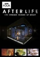 BBC: После смерти. Загадочная наука разложения