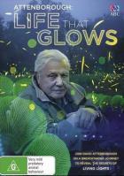 BBC: Живой свет с Дэвидом Аттенборо. Биолюминесценция