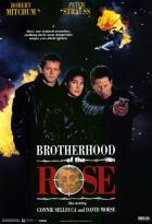 Братство розы