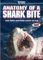 Discovery. Анатомия укуса акулы