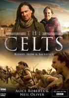 Кельты: Кровь и железо