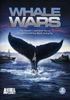 Китовые войны