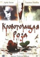 Кровоточащая роза
