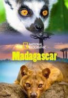Мадагаскар: Легенда острова лемуров