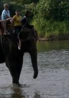 На память о Сиаме: За экзотикой на реку Квай.