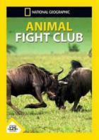National Geographic: Бойцовский клуб для животных