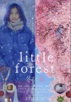 Небольшой лес: Зима и весна