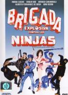 Взрывная бригада против ниндзя