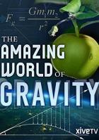 Я и гравитация. Сила, формирующая нашу жизнь