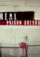 Я сбежал: настоящие побеги из тюрьмы