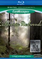 Живые Пейзажи: Калифорнийские секвойи