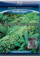 Живые пейзажи - Тропический лес Олимпик