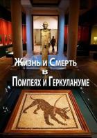 Жизнь и смерть в Помпеях и Геркулануме