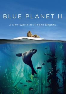 BBC: Голубая планета 2, 2001