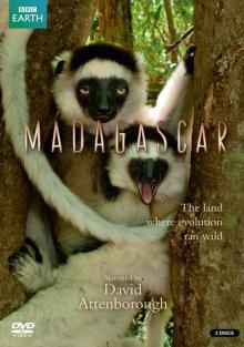 BBC: Мадагаскар, 2011