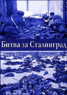 Битва за Сталинград, 2013