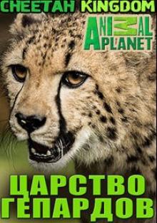 Царство гепардов, 2010