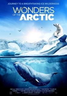 Чудеса Арктики, 2014
