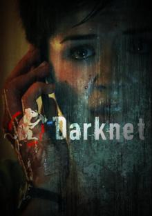 Даркнет, 2013