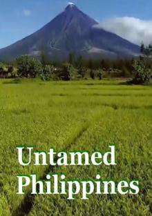 Дикие Филиппины. Рай, 2018