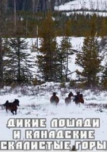 Дикие лошади и Канадские Скалистые горы, 2008