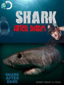 Discovery: Акулы под покровом темноты, 2009