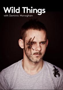 Доминик Монаган и самые дикие существа, 2012