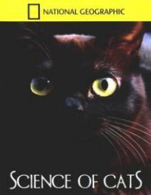 Исследование - Наука о кошках, 2008