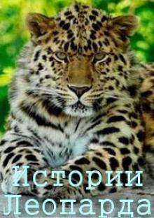 Истории леопарда, 2014