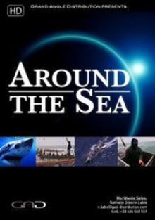 Море вокруг, 2008