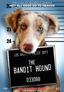 Пёс бандит, 2016