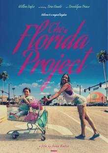 Проект «Флорида», 2017
