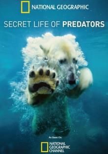 Тайная жизнь хищников, 2013