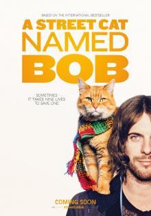 Уличный кот по кличке Боб, 2016