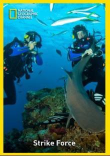 В опасных водах Австралии. Обед для акул, 2010