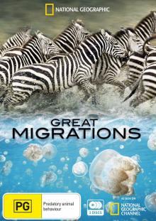 Великие миграции, 2010