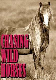 Вслед за дикими лошадьми, 2008