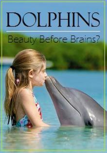 Дельфины: тест на интеллект, 2011