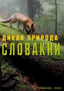 Дикая природа Словакии, 2015