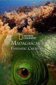 Фантастические существа Мадагаскара, 2016