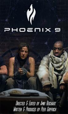 Феникс9, 2014
