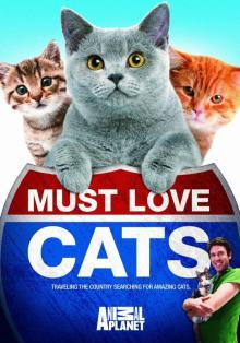 Кошек не любить нельзя, 2011