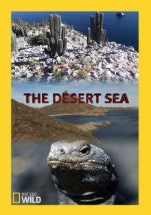 Nat Geo Wild: Пустынное море, 2016
