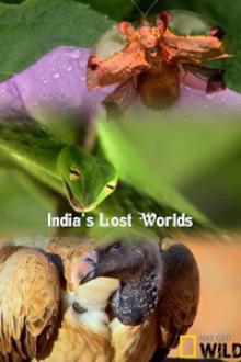 National Geographic. Потерянные миры Индии, 2015