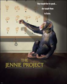 Проект Дженни, 2001
