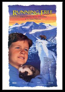 Свободный охотник, 1994