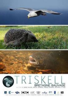 Трискелион. Природа Бретани, 2015