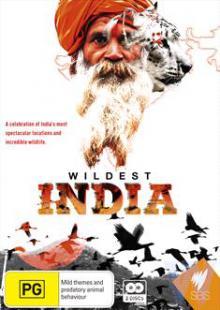 В дебрях Индии, 2011