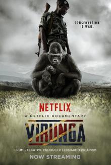 Вирунга, 2014